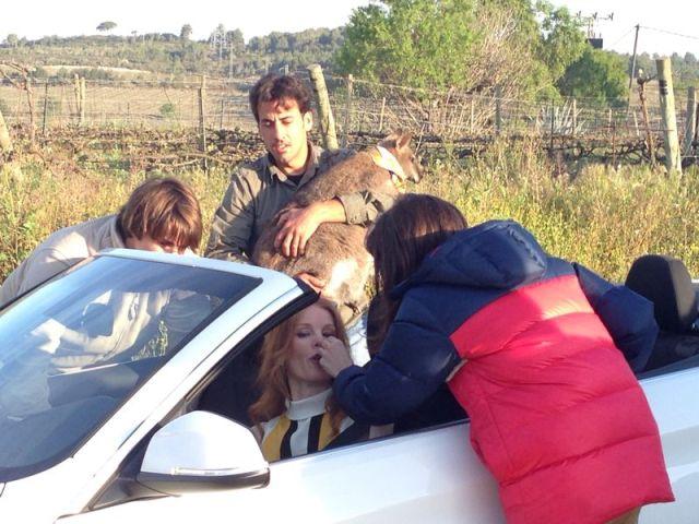alquiler bmw anuncio blanco cabrio descapotable barcelona 420 serie tyreaction jordi nebot 3