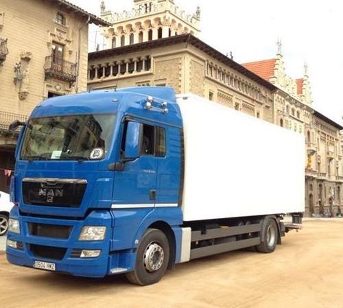 P0029 Camión caja rigida 1