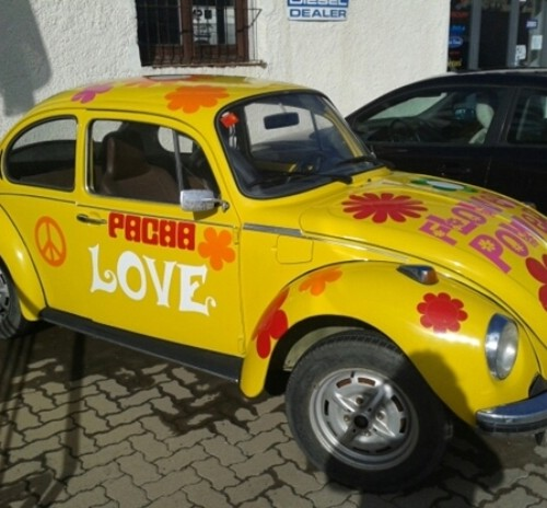 10059 beetle amarillo hippy CS (2)