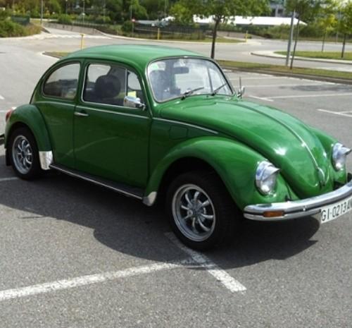 10107 escarabajo verde lat (2)
