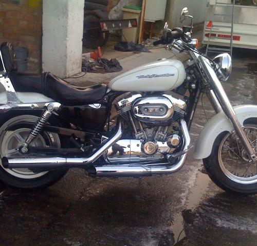 10157 Harley sporster  883 blanca lat. 1