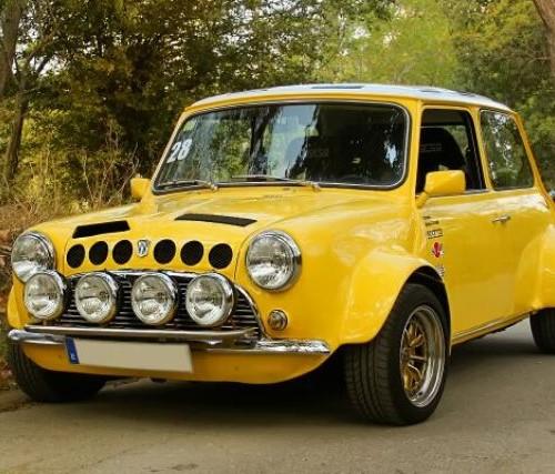 P0065 mini groc