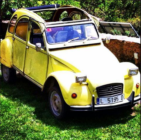 P0014 citroen 2cv groc cabrio