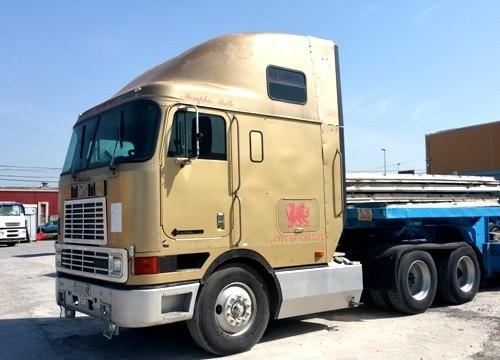 P0051 Internacional dorado