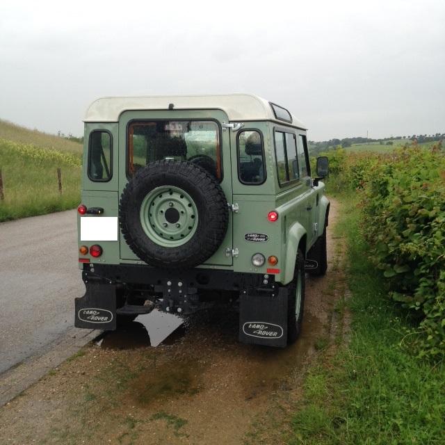 10732 Alquiler Land Rover Santana verde trasero